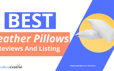 Best Feather Pillow Reviews (Top Rated) – Listing and Features